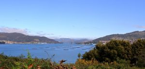 Licencia de Actividad en Vigo
